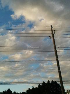 電柱にカラスの写真・画像素材[1191445]