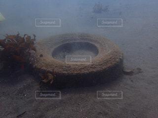 小田原漁港の海底ゴミ拾い、タイヤの写真・画像素材[4256273]