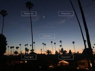 カリフォルニアのサンセットの写真・画像素材[1230489]