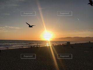 サンタモニカのサンセットの写真・画像素材[1230492]