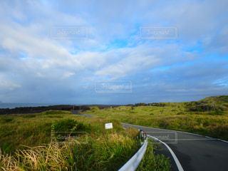 三宅島の広大な自然の写真・画像素材[1230753]
