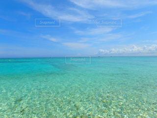 エメラルドグリーンのビーチの写真・画像素材[1230827]