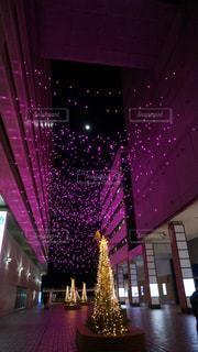 紫色の光の部屋での写真・画像素材[1191497]