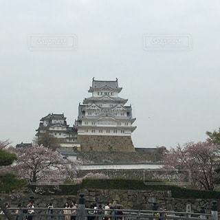 バック グラウンドで姫路城と城の前に羊の群れの写真・画像素材[1192527]