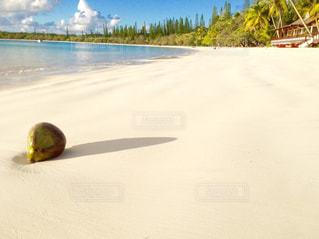 イルデパン島のビーチの写真・画像素材[1193619]