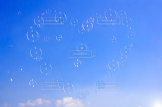 シャボン玉の写真・画像素材[1324954]
