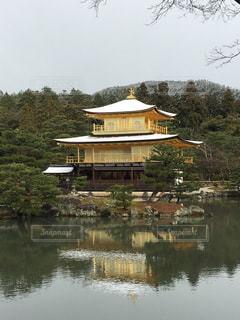 金閣寺の雪化粧の写真・画像素材[1195165]
