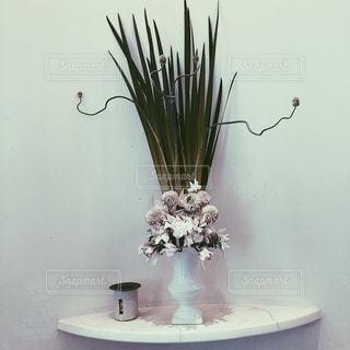 和風の花の写真・画像素材[1855753]