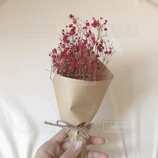 花瓶の中の赤い花の写真・画像素材[2493023]
