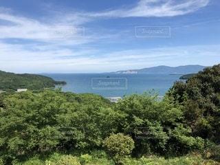 瀬戸内海の写真・画像素材[1195871]