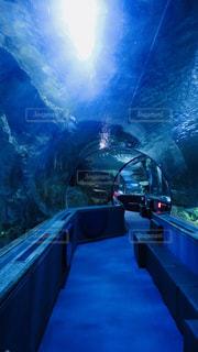 グアムの水族館の写真・画像素材[1252310]