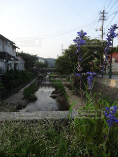島根県の川 - No.1253831