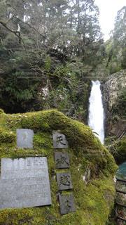 浄蓮の滝の写真・画像素材[1255735]