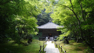 瑞巌寺の写真・画像素材[1384885]