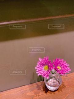 花の写真・画像素材[2896496]
