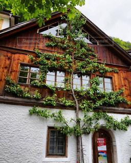 オーストリア_ハルシュタット016の写真・画像素材[1218722]