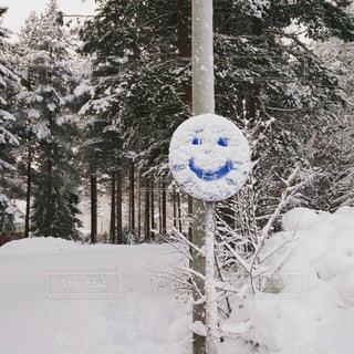 フィンランド002の写真・画像素材[1243202]