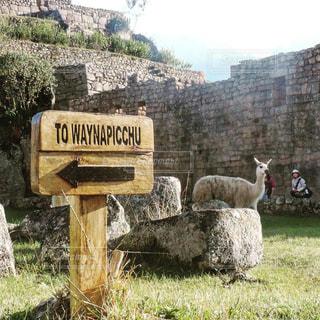 ペルー_マチュピチュ012の写真・画像素材[1248213]