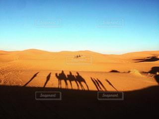 モロッコ_サハラ砂漠043の写真・画像素材[1250111]