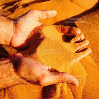 モロッコ_サハラ砂漠042の写真・画像素材[1250112]
