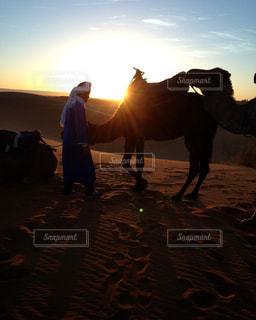 モロッコ_サハラ砂漠027の写真・画像素材[1250128]