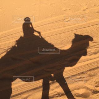モロッコ_サハラ砂漠020の写真・画像素材[1250135]