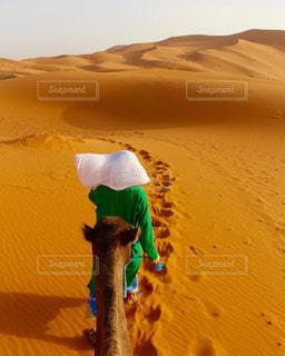 モロッコ_サハラ砂漠013の写真・画像素材[1250143]