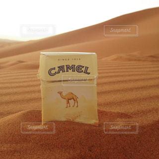モロッコ_サハラ砂漠006の写真・画像素材[1250150]