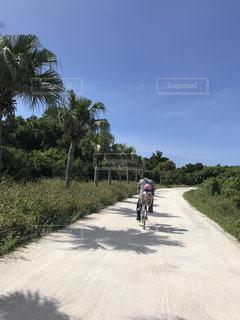 竹富島のレンタサイクルで子供を乗せてサイクリングの写真・画像素材[1198054]