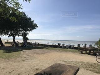 コンドイ浜の写真・画像素材[1198056]
