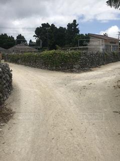 竹富島の石垣の続く道の写真・画像素材[1198065]