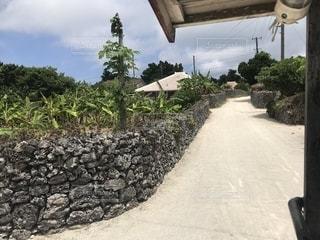 竹富島の石垣の続く道の写真・画像素材[1198067]