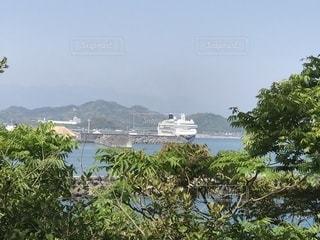桂浜の樹々の間から見えるクルーズ船の写真・画像素材[1198106]