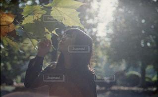 女性の写真・画像素材[263879]