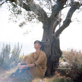 男と女の木に座っています。 - No.809760