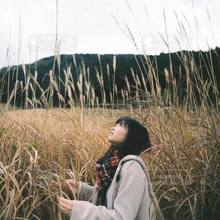 草の中に立っている男の人の写真・画像素材[913805]