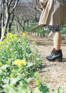 草の中に立っている少女の写真・画像素材[1181530]