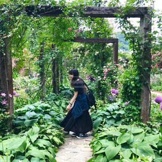 庭に座っている人の写真・画像素材[1212633]