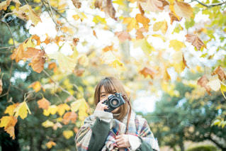 秋を撮るの写真・画像素材[1388151]