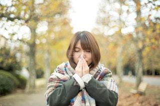 人恋しい季節の写真・画像素材[1388154]
