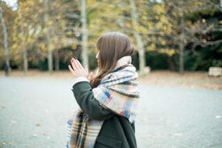 秋の訪れの写真・画像素材[1388155]