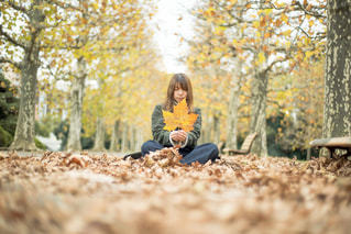 秋を楽しむの写真・画像素材[1388156]