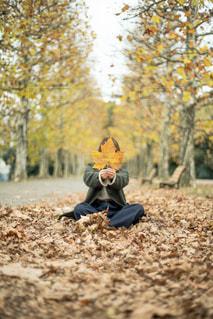 平成最後の秋の写真・画像素材[1388157]