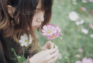 花の写真・画像素材[1582294]