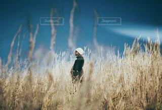 乾いた草のフィールドに立っている人の写真・画像素材[1723112]