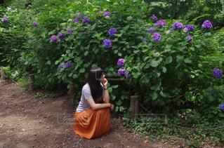 紫陽花と女性の写真・画像素材[1222285]