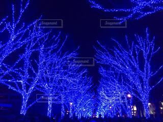 渋谷の青の洞窟イルミネーションの写真・画像素材[1199359]