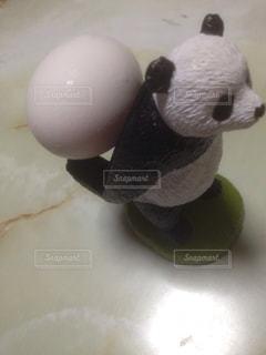 卵とパンダの写真・画像素材[1201648]
