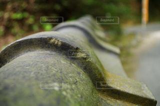 近くにいくつかの靴のアップの写真・画像素材[1199656]