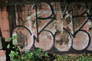覆われている落書きの壁の写真・画像素材[1199790]